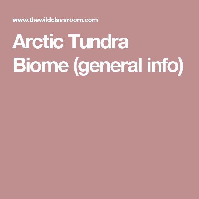 Arctic Tundra Biome (general info)