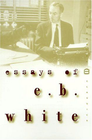 one hundred great essays by robert diyanni