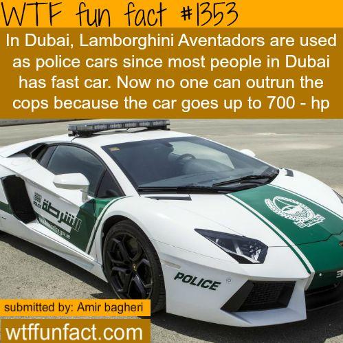 Dubai Lamborghini - police cars MORE OF WTF FUN FACTS are coming HERE dubai cars and fun facts