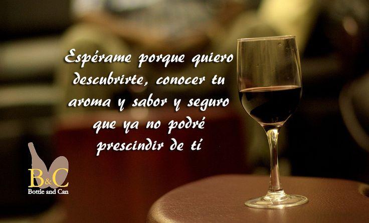 Espérame porque quiero descubrirte.... #vino #Jumilla #CasaDeLaErmita http://tienda.bottleandcan.com/es/jumilla/403-vino-casa-de-la-ermita-crianza-75-cl.html #wine #winelover #winery #bodega #viñedo #vineyard #uva #grape #vendimia #vintage #TiendasOnline #Gourmet #bottleandcan #Granada #Andalucia #Andalusia #España #Spain www.tienda.bottleandcan.com 🍷🍴 📞 +34 958 08 20 69 📲 +34 656 66 22 70