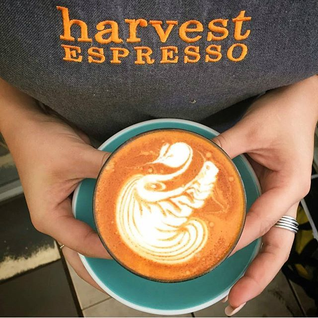 A beautiful red latte from our friends in Perth @harvest_espresso #redespresso #rooiboscappuccino #redcapuccino