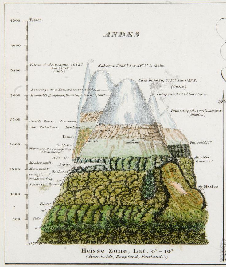 Andes by Alexander von Humboldt via terrismundi #Illustration #Science #Nature…