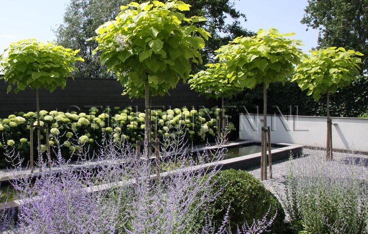 Strakke en stijlvolle villa tuin