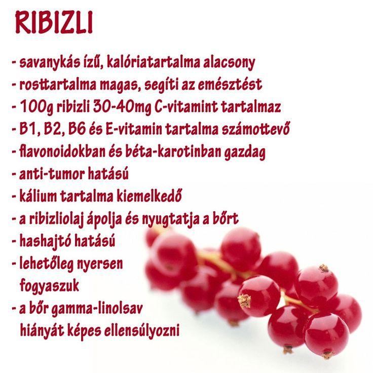 Ribizli | Socialhealth