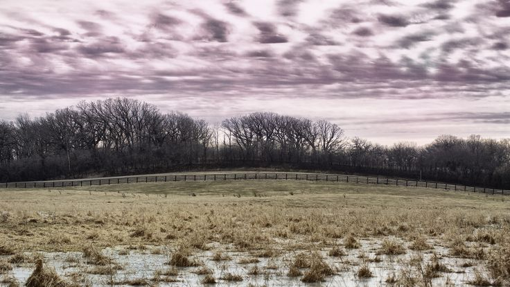 'Fence and Sky' by Steve McKenzie #FlickrHeroes  #fence #sky #clouds #trees #tree #sunset #sunrise #grass #ice #winter #canon #5D #mark #field #landscape