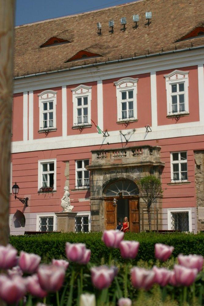 Vác, Hungary: Egykori siketnémák királyi intézete