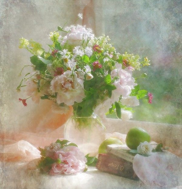 Натюрморты фото. Цветы с дождем