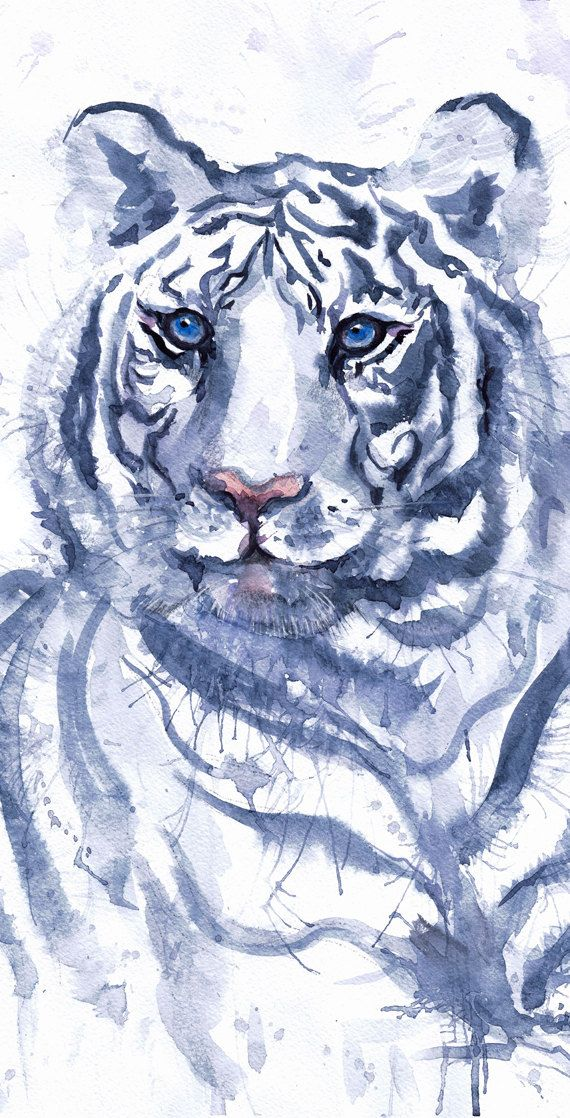 Tiger Watercolor Art, Feng Shui Decor, Snow Tiger Painting, Tiger Wall art, animal art print, Illustration Wildlife art, white tiger Animals Snow tiger high quality fine art print of my original watercolor painting. It is the work of a watercolor series Portraits of the Heart   Size paper: 21 cm x 29,7 cm, 8 1/4 x 11.5/8, A4.(with white borders) - 18.00 $  fit in frames found in big shops 8x10(20cmx25cm) - leaving extra for matting - US  8x12(20cmx30cm) - leaving extra for matting - EU…