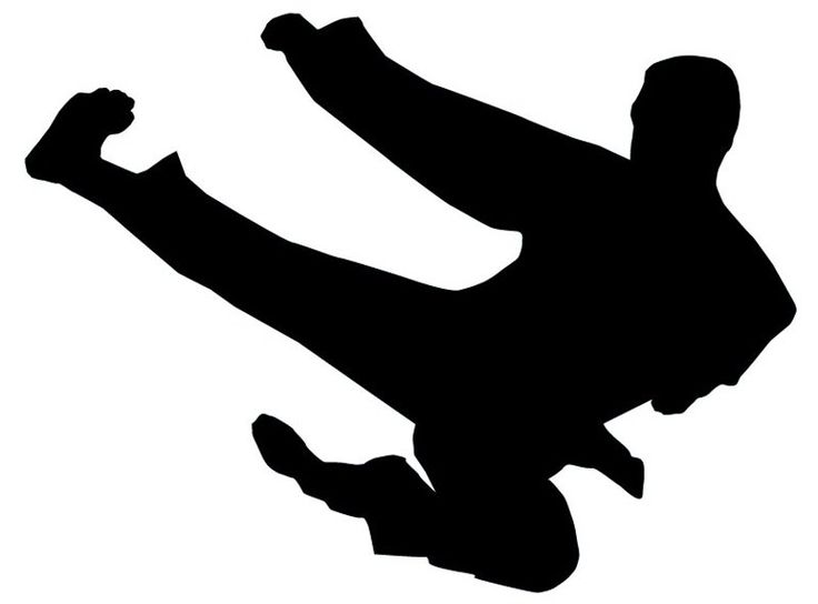ninja kick silhouette - Google Search | Air brush | Pinterest | Search ...