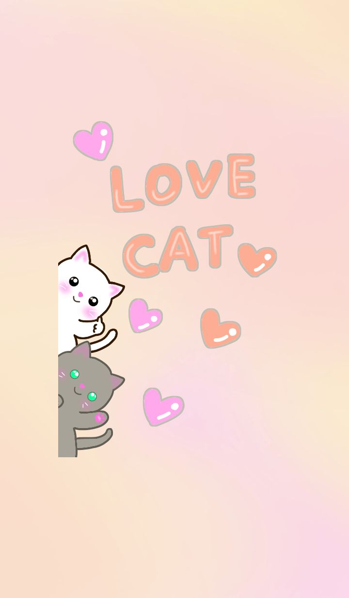 lovely cats ! white cat,american shorthair,tabby cat,russian blue.colorful color Theme.