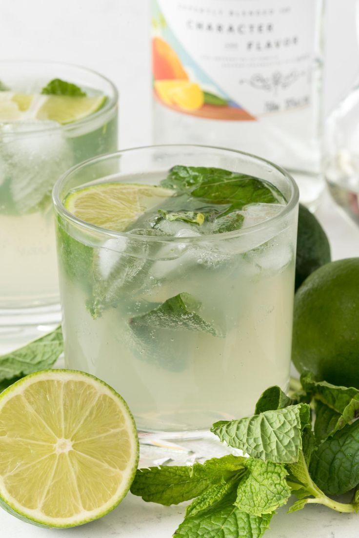 1000 ideas about mango mojito on pinterest mojito for Pitcher drink recipes for parties