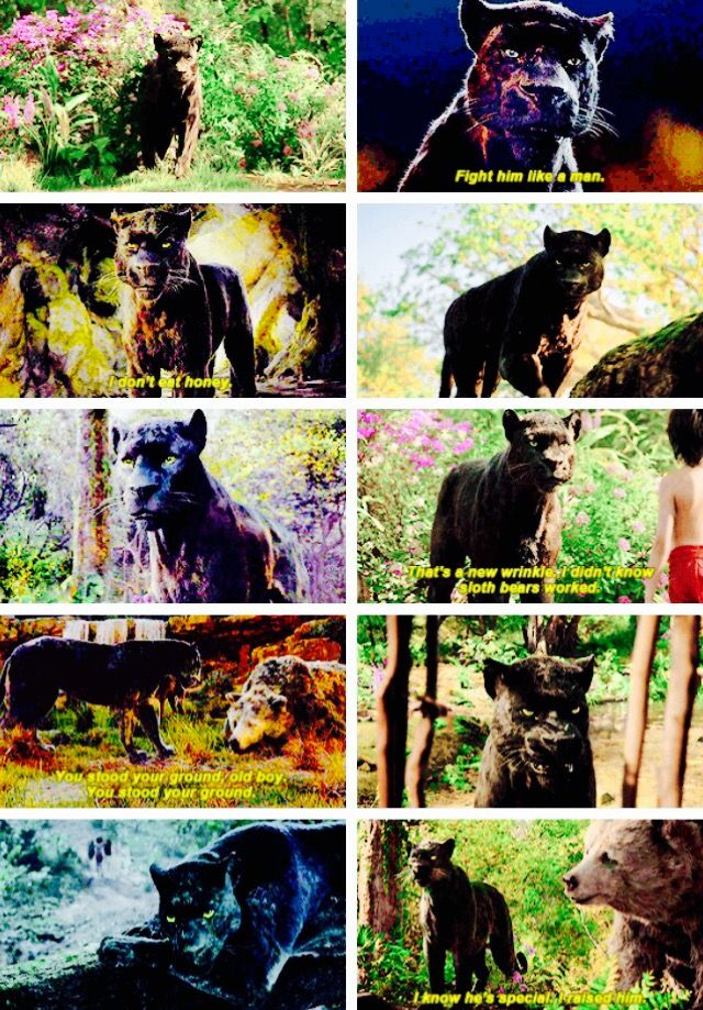The Jungle Book + Bagheera
