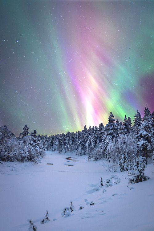 Lapland Norway Northern Lights