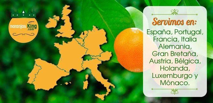 Venta de Naranjas a domicilio a España, Alemania, Inglaterra, Francia, Portugal, Italia, Holanda, Bélgica, Austria, Luxemburgo y Mónaco