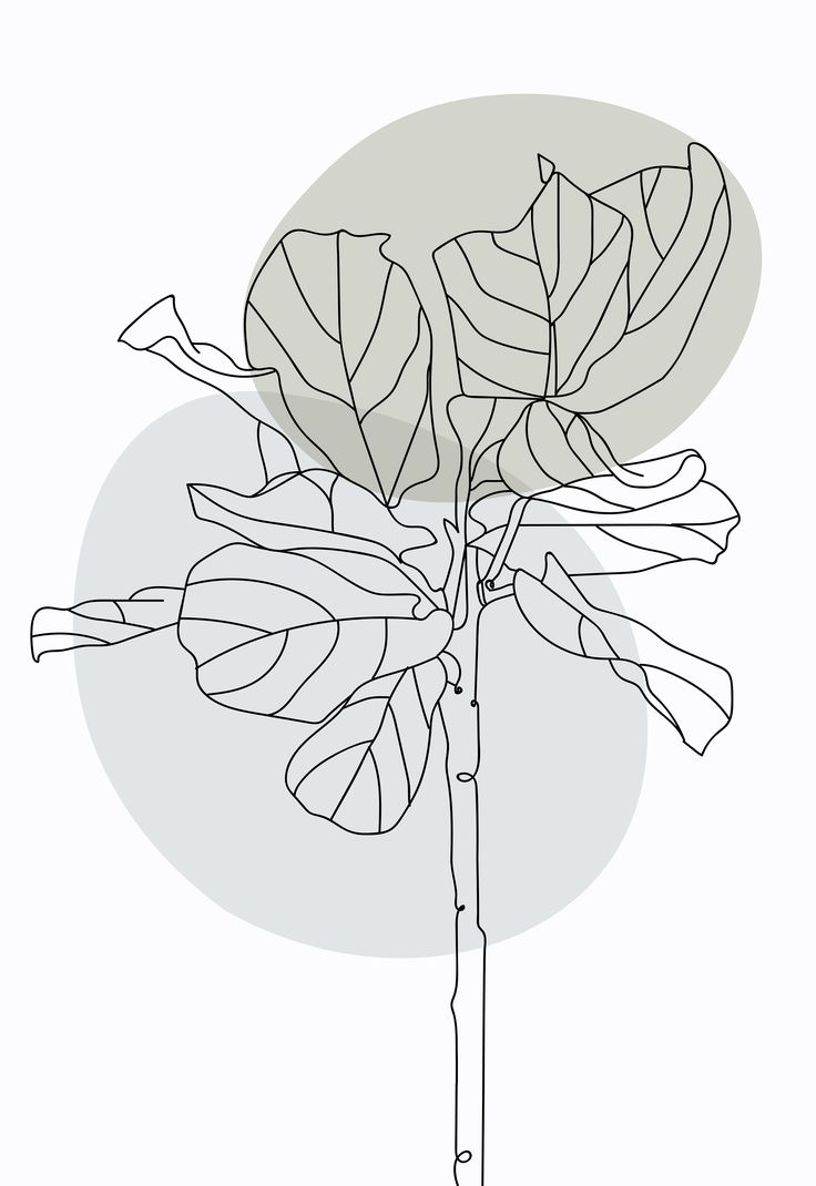 Minimalist one line drawing plant poster botanical poster