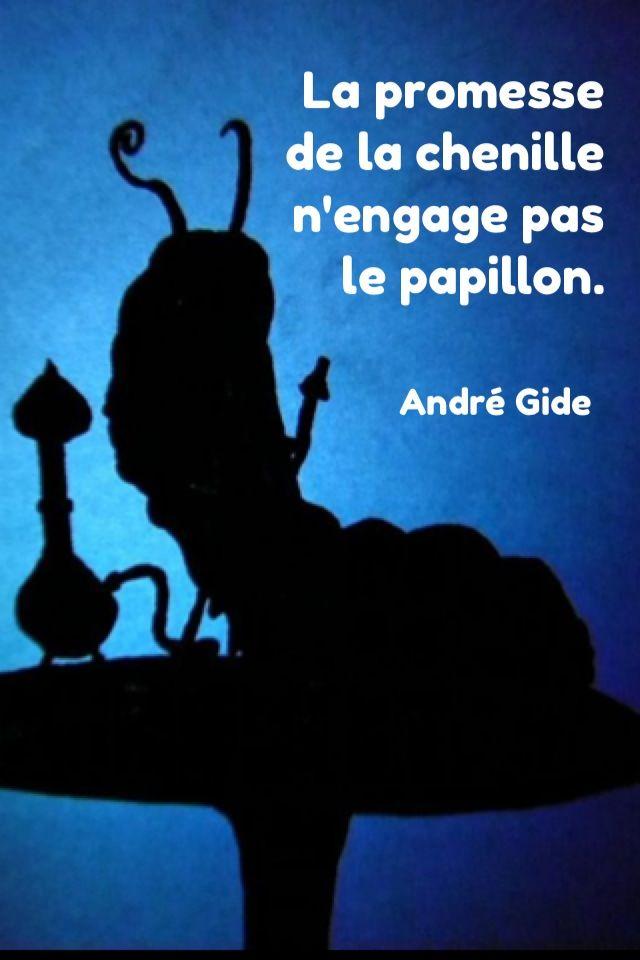 #quotes, #citations, #pixword, #gide