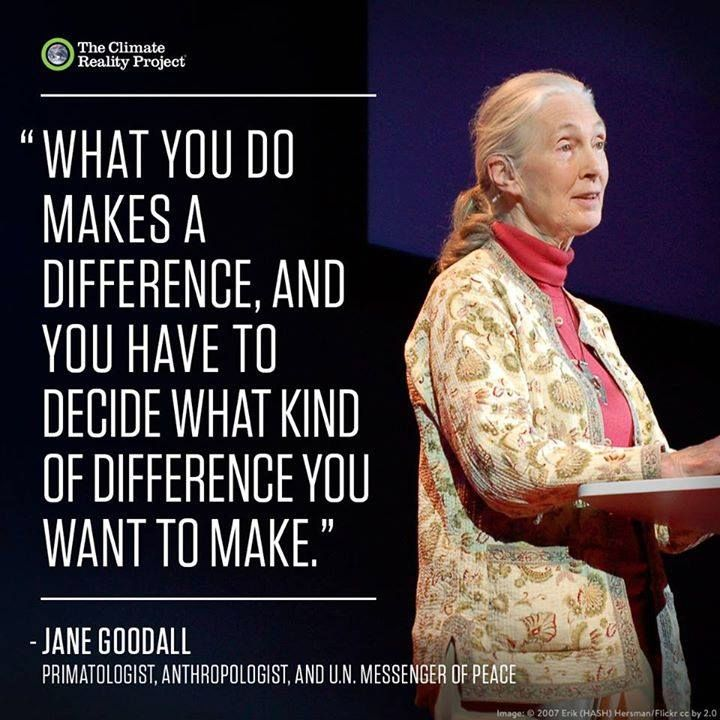 Jane Goodall Quotes: 53 Best Inspiration! Images On Pinterest
