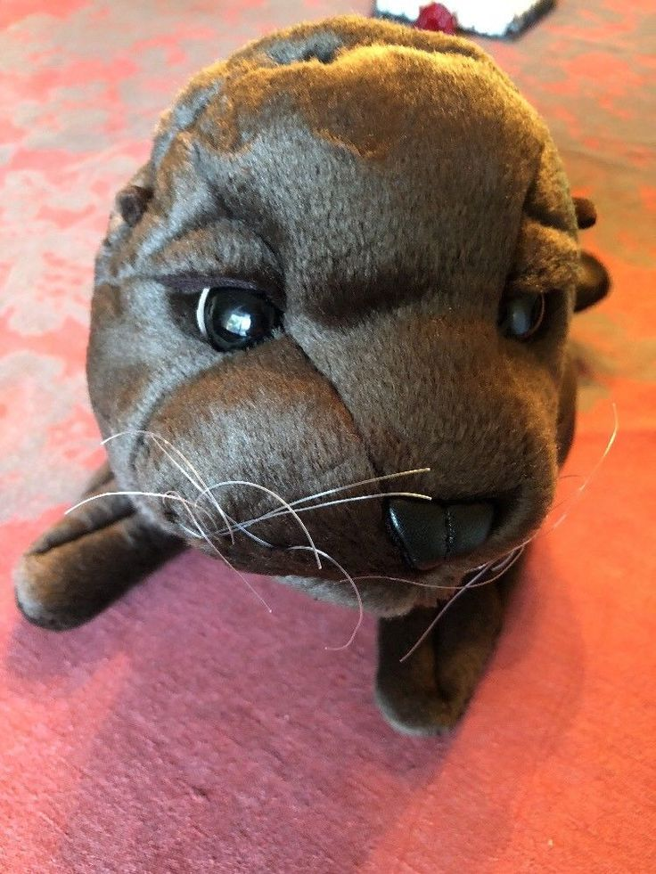 Folkmanis Puppet Large Sea Lion 2820 Hand Chocolate Brown Show Animal Retired #Folkmanis