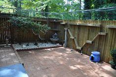 Outside Cat Enclosures | Outdoor enclosures