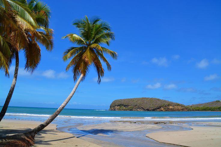 Good Morning!  #NewWeek #Monday #Views #Beauty #IslandLife