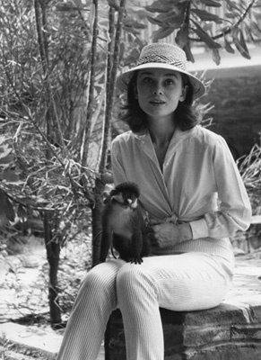 Audrey Hepburn during the filming of 'The Nun's Story', 1959, in the Belgian Congo. The little monkey appears in the film as her only companion during her convalescence.