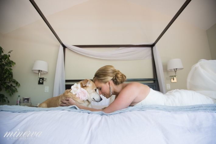 bride with her dog portraits during getting ready heather+mike • Wyndham Grande Jupiter Wedding Photography » South Florida Wedding Photography | Miami, Fort Lauderdale & Palm Beach Wedding, Engagement & Portrait Photographers
