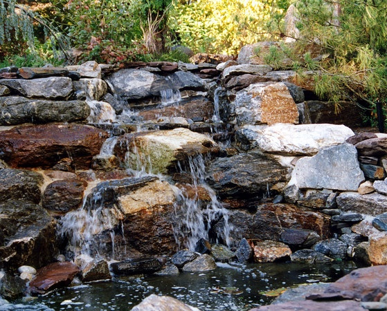 17 best yard images on pinterest backyard ponds for Decorative pond fish crossword