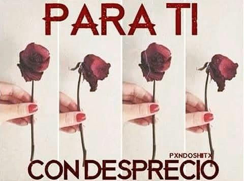 #paraticondesprecio #pxndx