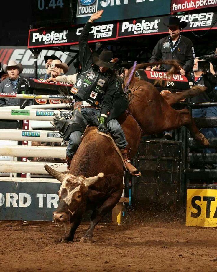 J B Mauney And Bushwacker Pbr Bull Riders Bull Riders Bull Riding