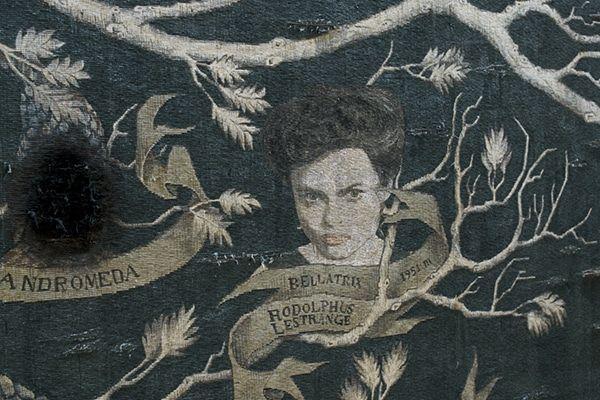 40 Creepy Facts About The Lestrange Black Family Of Harry Potter Harry Potter Family Tree Bellatrix Lestrange Aesthetic Bellatrix