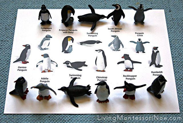 Montessori-Inspired Multi-Level Penguin Activities