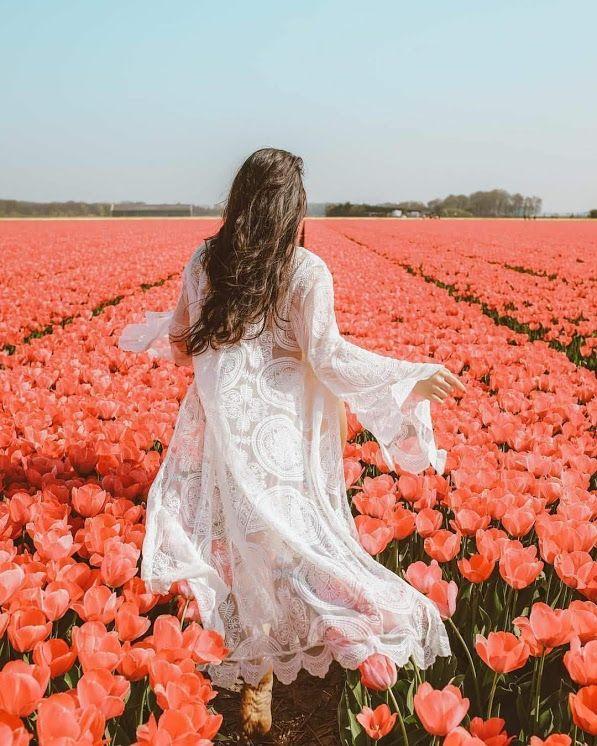 Beautiful Une Fleur Parmi Des Fleurs Idee Photo Insta Photo Profil Images Paysages