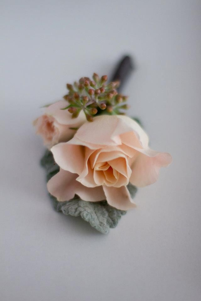 Beautiful blush rose boutonniere. Source: patty cioffi events & florals #boutonniere