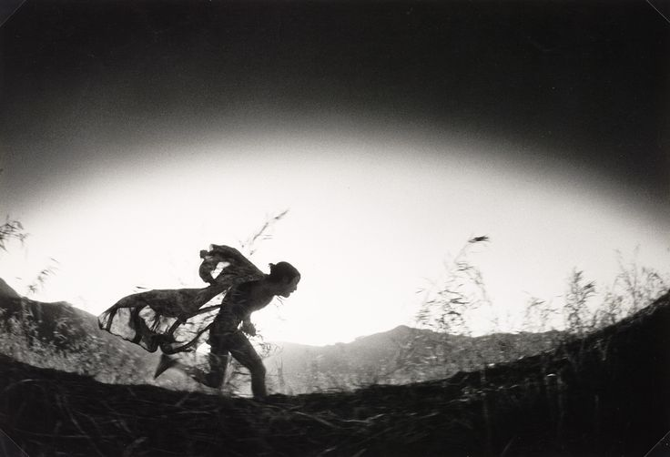 Japan's most influential photographers - including Daidō Moriyama, Yutaka Takanashi, Shōmei Tōmatsu, and Nobuyoshi Araki - areshown together for the first time in Provoke, a new exhibition at The Vienna-based Albertina museum, which explores the significance of the short-lived and revered m