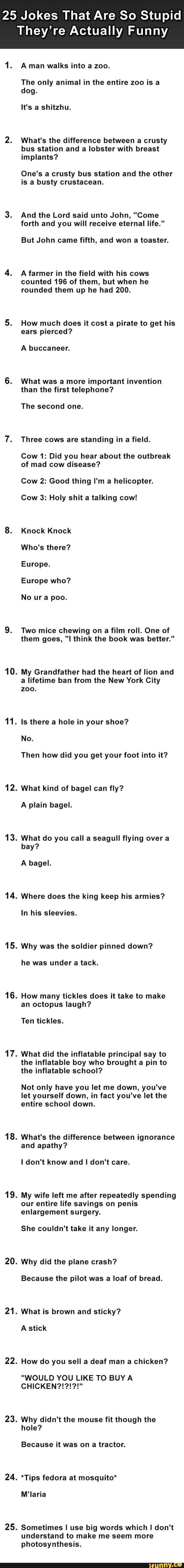 Best Lame Jokes Ideas On Pinterest Corny Jokes Funny Puns - 32 puns will make laugh way