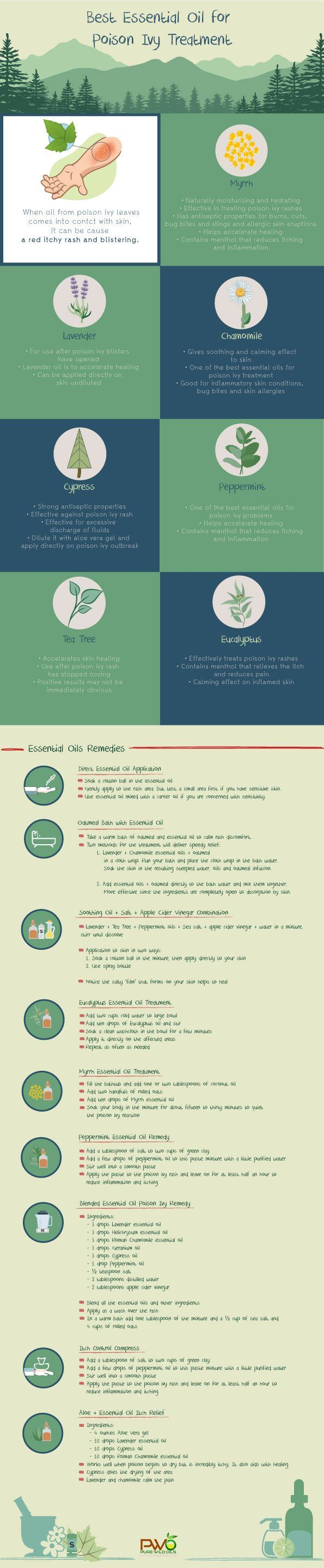 Infographic of Essential Oil for Poison Ivy