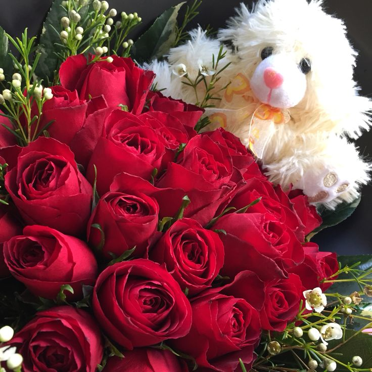 Red roses  white geralton wax and scruffy teddy -Available at Rosemary Florist Sea Point