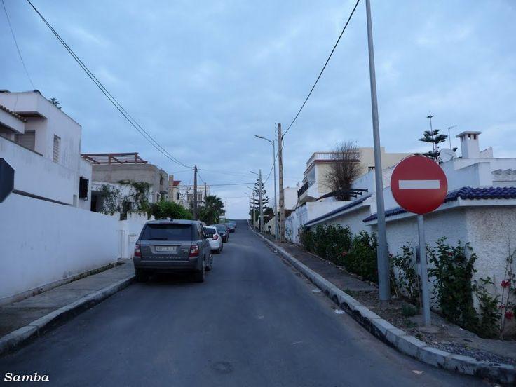 Harhoura, Segrou Avenue 4 - Samba 2011