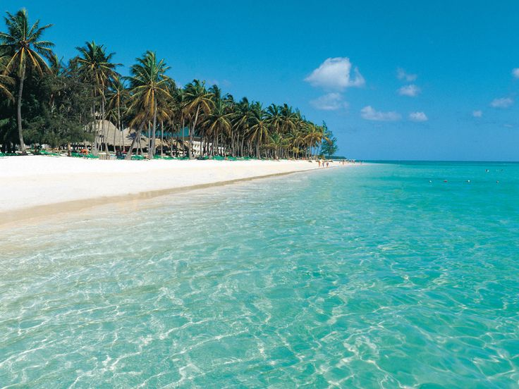 Barcelo Bavaro Beach – Punta Cana | Transat Holidays Take this coupon and travels to the Dominican Republic, 3% discount on renting houses, apartments and private room with Wimdu. #wimdu #airbnb #airbnbcoupon #puntacana #dominicanrepublic #honeymoon #wedding