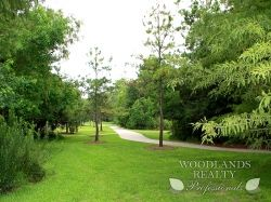 Pathway and field with trees - Gallery - Woodlands Realty Pros
