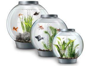 Official biOrb patented fish tank European Self Filtering Globe Aquarium - Save with Rewards card