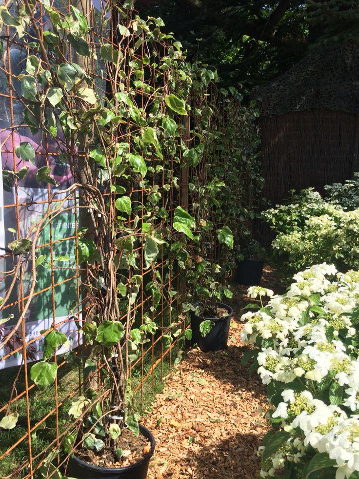 Deco Jardin Fer A Beton - Palissade cr?ative avec fer ? b?ton FER A BETON Pinterest
