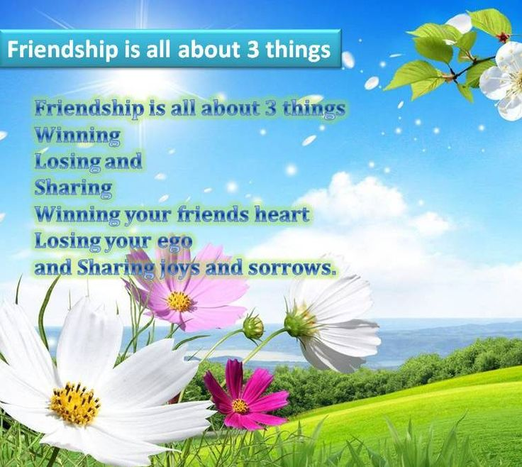 New friendship sms, jokes and quotes