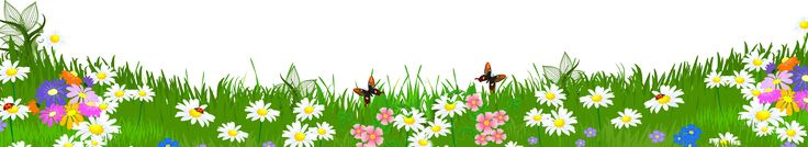 Grass Ground with Flowers PNG Clipart