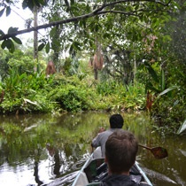 The Amazon Rain Forest... one of the most magical places in the world :-)