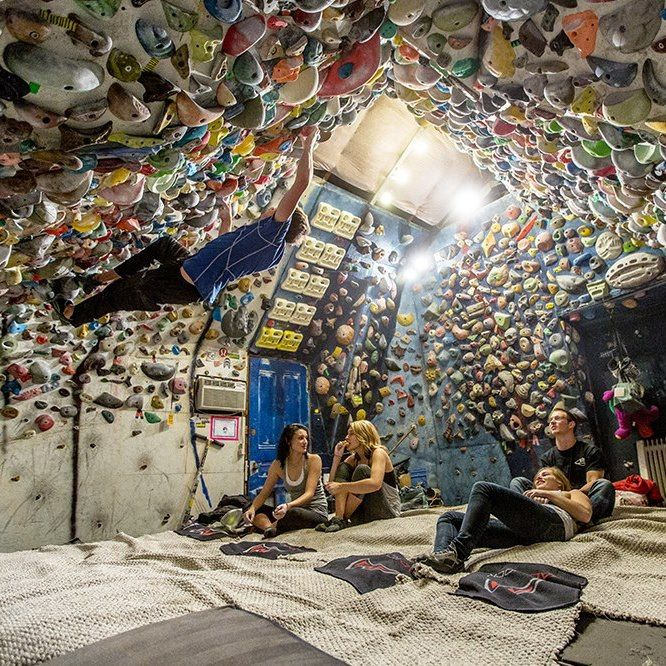 """""""I see your garage climbing wall and raise you""""... good lord..."""