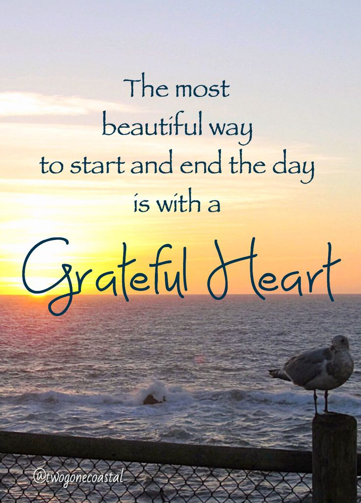 68586 Best Attitude Of Gratitude Images On Pinterest