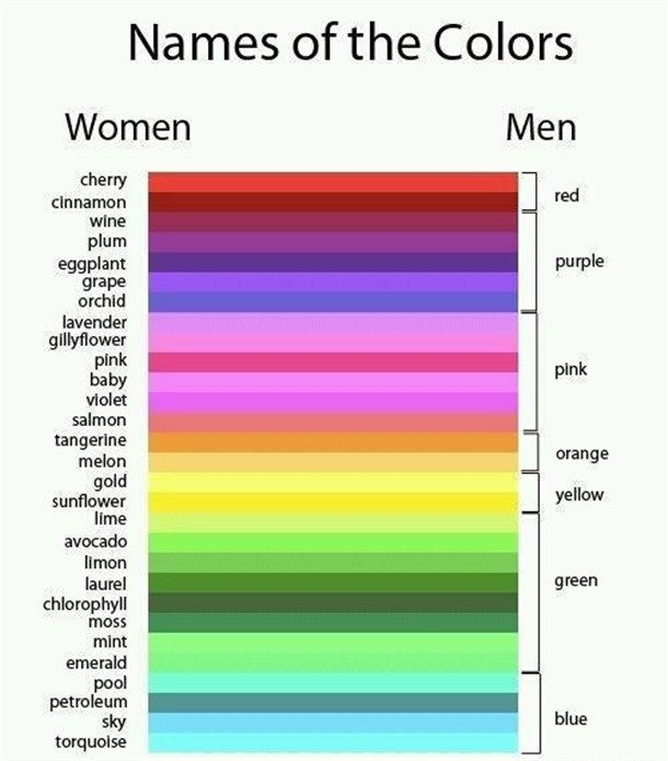 Yep, that's about right!: Colors Charts, Funny Pics, Website, Funny Pictures, Web Site, So True, Internet Site, Men Vs Woman, True Stories