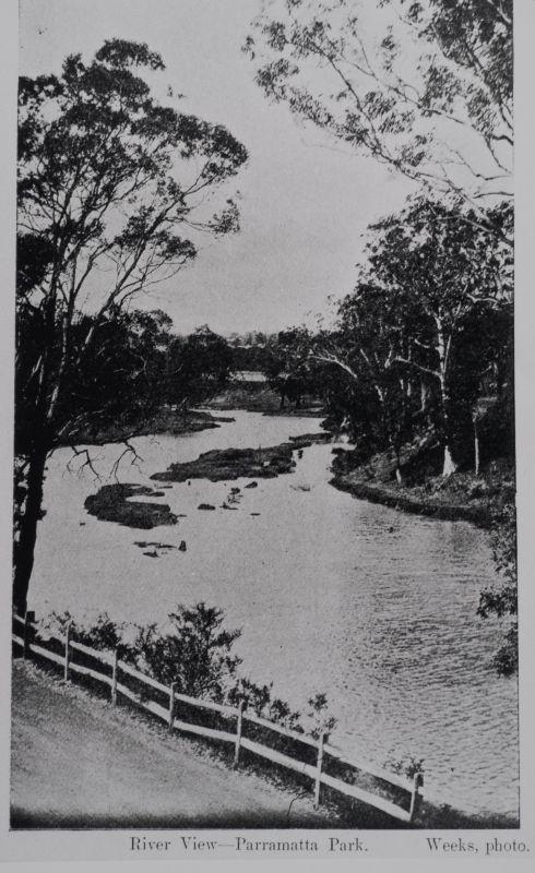 Parramatta River, view of a length of the river's course through Parramatta Park, undated LSP00359