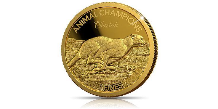 najszybsze-zwierzeta-swiata-na-monetach-czyste-zloto-gepard